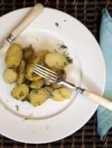 potatoplate1