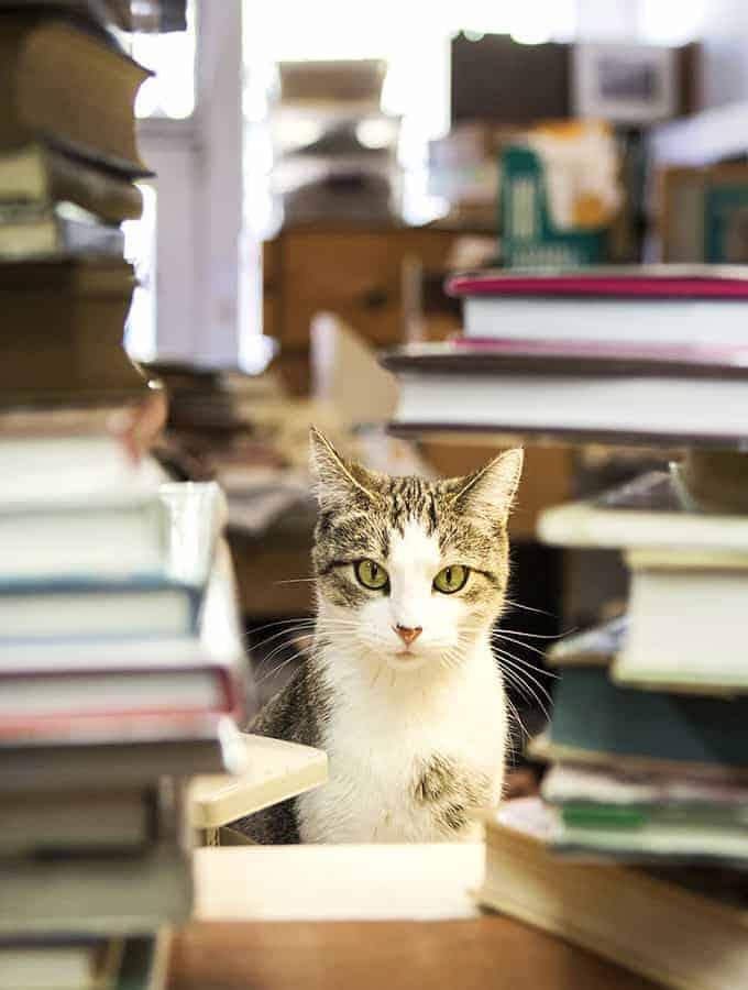 Bijouxs_com-bookstore-emma-web