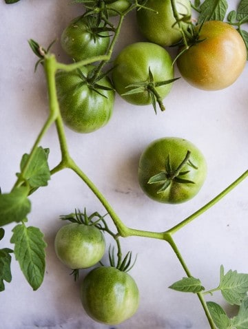 Bijouxs_com-green-tomatoes