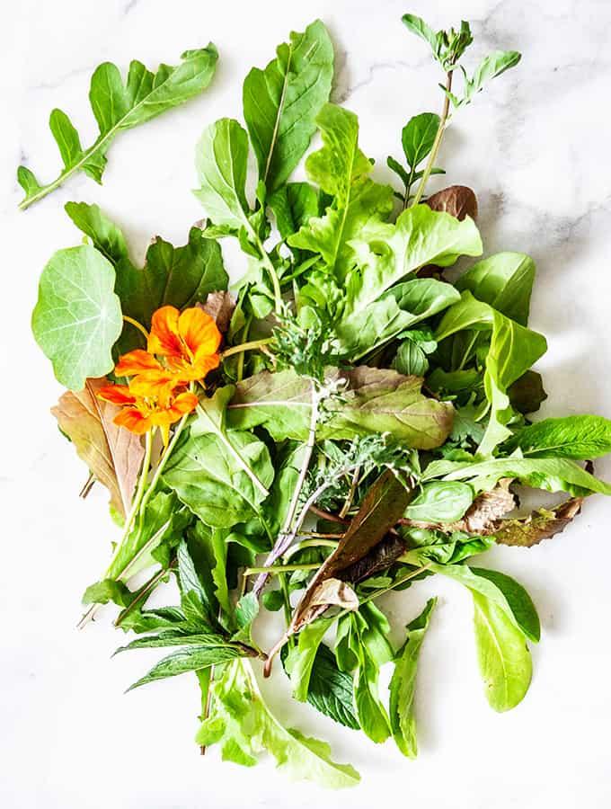 Victory Garden Salad