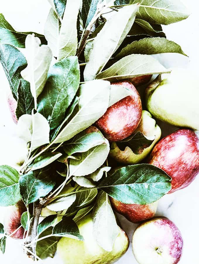 Simple Apple Tart | Bijouxs Little Jewels